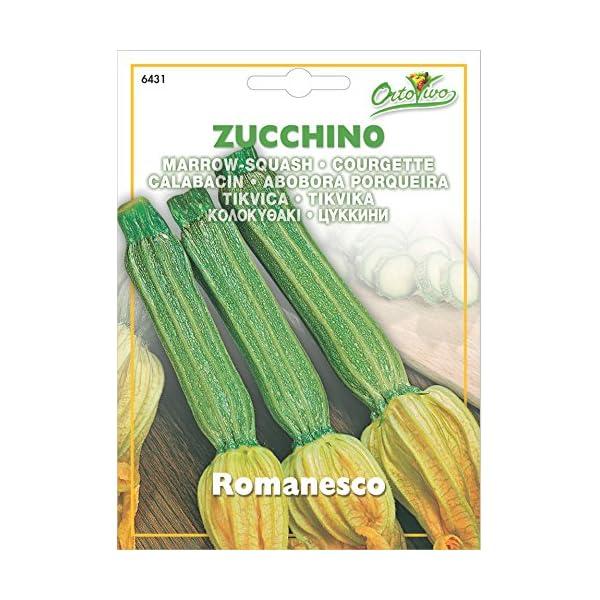 Hortus 56ZUC6431 Maxi Busta Ortovivo Zucchino Romanesco, 12x0.2x16.5 cm 1 spesavip