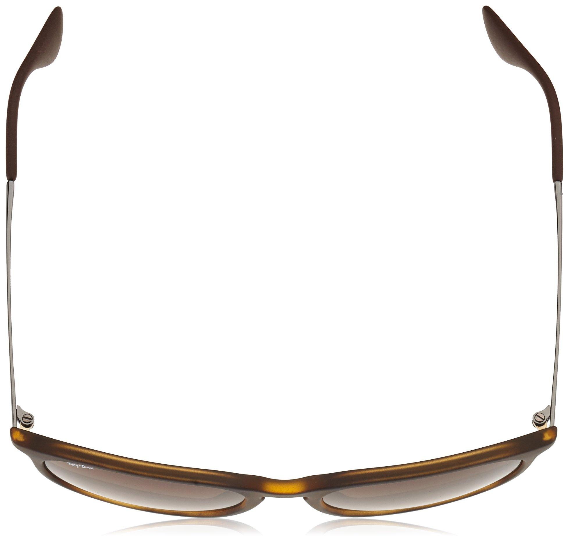4aedc12083e3 Ray-Ban, RB4171, Erika Women's Oversized Round Sunglasses 54 mm, Havana  Rubber