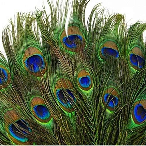 "SHUO 10-12""(25-30cm) 50pcs Natural Peacock Feather Eyes Screen Green DIY Craft Holiday Wedding Decorations"