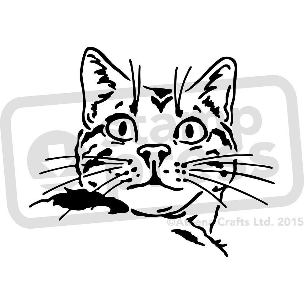 Stamp Press A4 Chat Pochoir Mural WS00000951