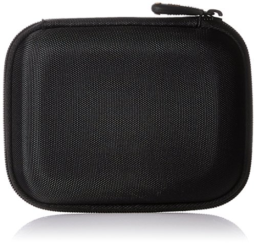 AmazonBasics Hard Carrying Passport Essential