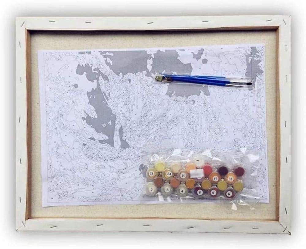 DOORWD Dipingi con i Numeri Kit Fai-da-Te Pittura a Olio Fiore di peonia Rosa su Tela Pre-Stampata Regali per Bambini Adulti Decorazione da Parete 40x50cm con Cornice