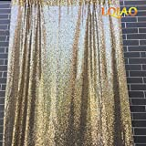 LQIAO Wedding Christmas Backdrop Glitter Light Gold 20FTx10FT Sequin Backdrop Window Curtain Photo Booth Photography Party Decoration