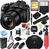 Panasonic LUMIX DMC-FZ2500 20.1 MP 20x F/2.8-4.5 Leica Optical Zoom Digital Camera + MIC-403 Mini Zoom Microphone + 64GB Accessory Bundle