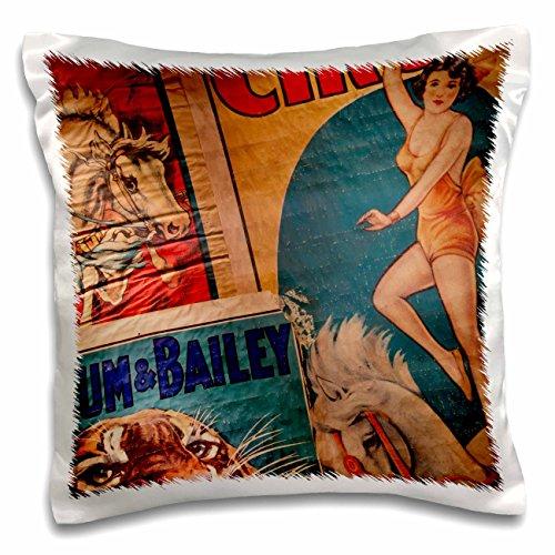 3dRose 3D Rose Florida-Sarasota-Ringling Museum-Circus Museum-Us10 Wbi0587-Walter Bibikow Design Pillowcase, 16