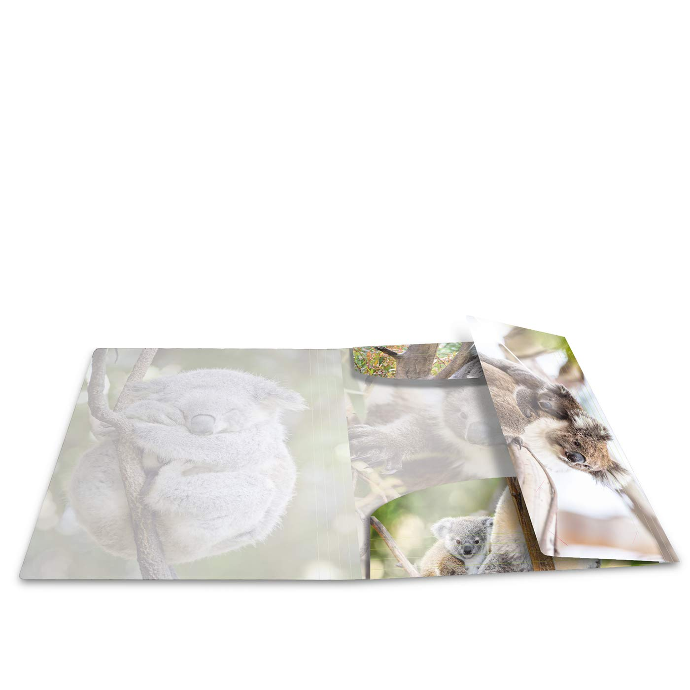 1/pi/èce avec int/érieur Herma 19323/brillant Chemise A4/Plastique Impression /à dessin avec chemise en caoutchouc s/érie animaux motif koala