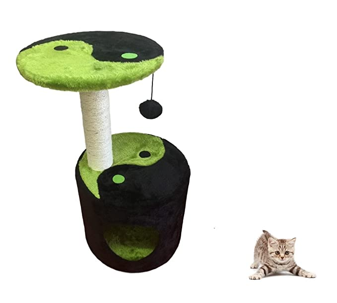 Ducomi® Napoleón - tiragraffi Parque Juegos para gato de sisal natural con amplia base y pelota juguete - Altura: 58 cm): Amazon.es: Productos para mascotas