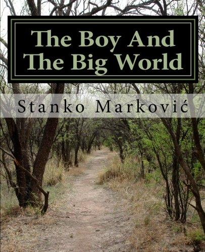 Download The Boy And The Big World ebook