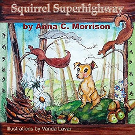 Squirrel Superhighway