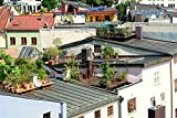 Laminated Poster Roof Terrace Garden Terrace Roof Garden House Roof Poster 24x16 Adhesive Decal