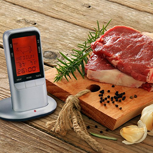 BBQ Buddy MT 100 Thermometer Sensor