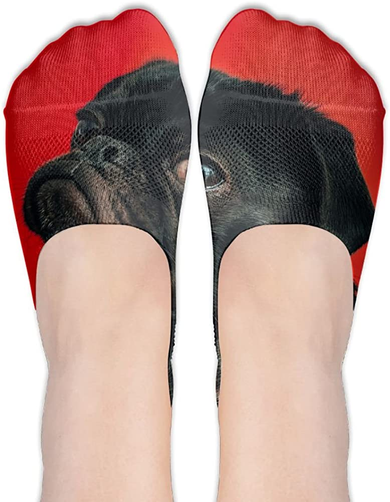 Dog Pet Womens No Show Low Cut Casual Ankle Socks