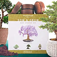 Nature's Blossom Bonsai Tree Kit. Grow 4 Types of Miniature Trees From Seed. A Complete Indoor Gardening Seed Starter...
