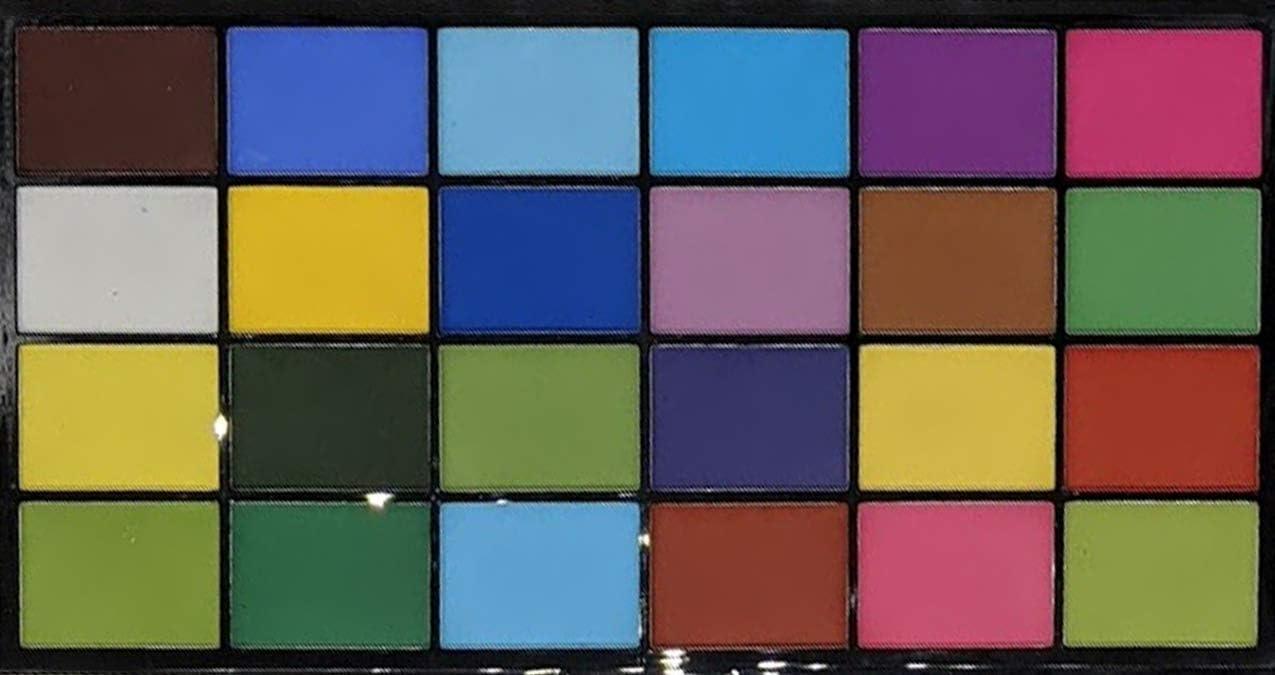 PETAL CRAFTS Dust Coloring Set (24 Pack)