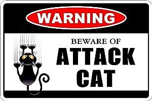 Cortan360 Warning Beware of Attack Cat 8