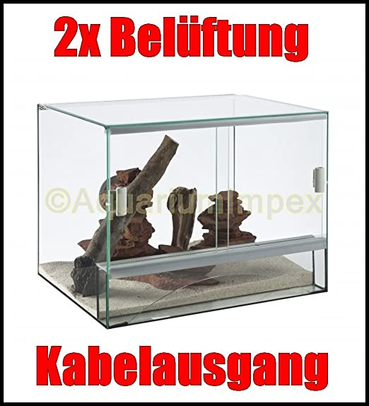 Terrario de cristal + ventilación 40 x 30 x 30 cm 30 40 puerta corredera: Amazon.es: Productos para mascotas