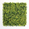 """Lifelike Dense Artificial Boxwood Panel 20""""x 20"""" 6 pack Water-free Durable Privacy Fence Screen Greenery Wall By ULAND, Suitable for Both Outdoor or Indoor, Garden, Backyard and Home Decor"""