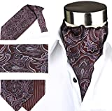 Men's Luxury 100% Silk Cravat Self Tie Woven Ascot Printed with Gift Box