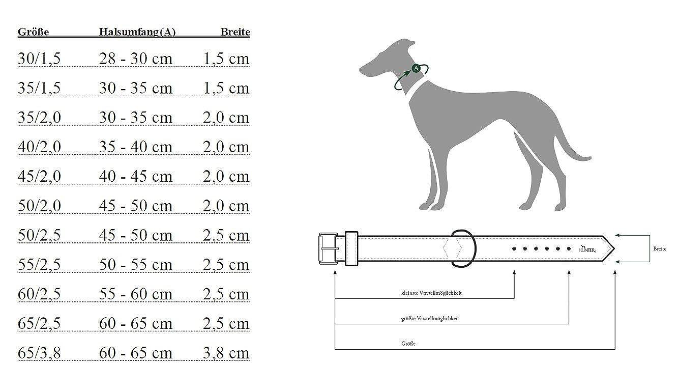 Collar de nylon modelo Neoprene Vario Plus para perros Hunter