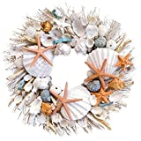 Lumiere Sunny Ocean Breeze Botanical Potpourri Seashell Wreath