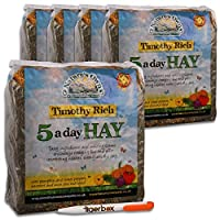 5kg Nature's Own Timothy Rich 5 a Day Hay Foraging Feed for Rabbits, Guinea Pigs, Chinchillas & Other Small Pets Animal Food & Tigerbox Antibacterial Pen