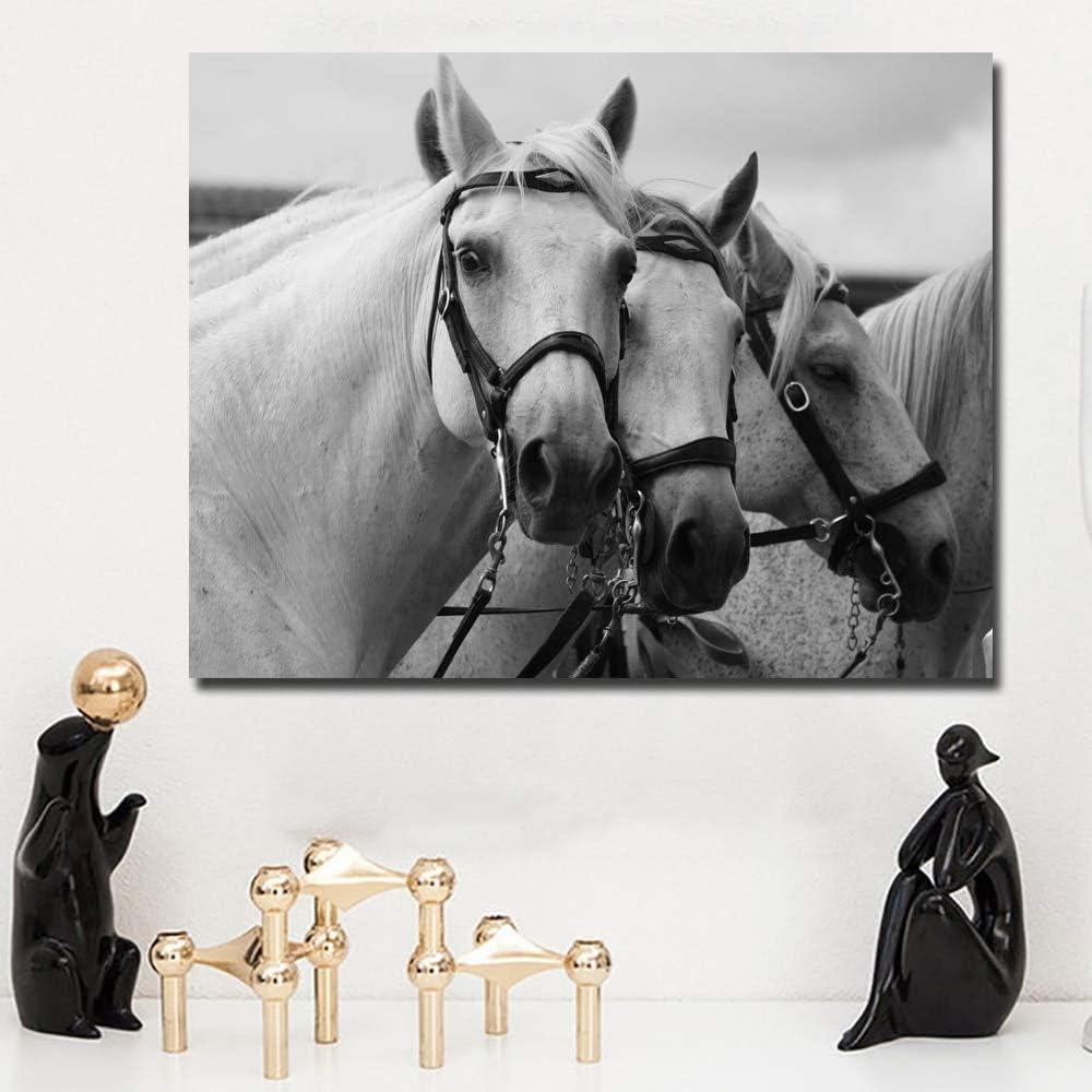 WYLJD Puzzles 1000 Piezas Rompecabezas 75*50cm Impresiones del Arte Animal Cabeza de Caballo Blanco Cuadros del Arte Decoración Decorativa para el hogar Pinturas para Sala de Estar