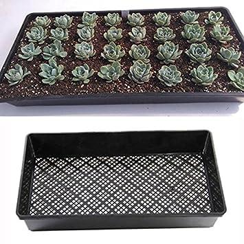 54 cm rectángulo moyashi Bandeja de cultivo PP plástico para guardería de jardín Seedling placa