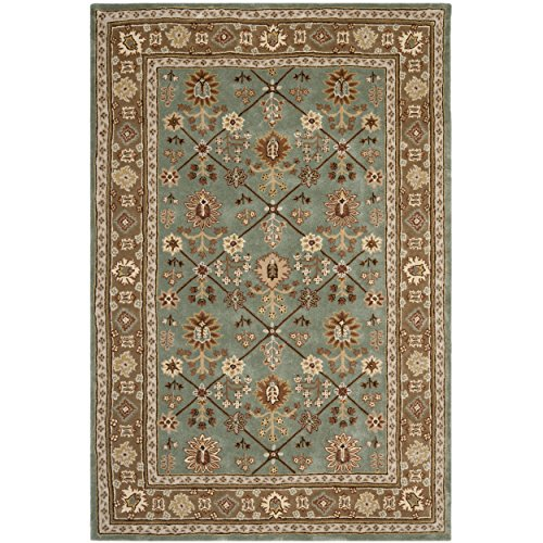 Hand Hooked Blue Rug (Safavieh Total Perform Collection TLP723A Hand-Hooked Blue and Taupe Area Rug (6' x 9'))