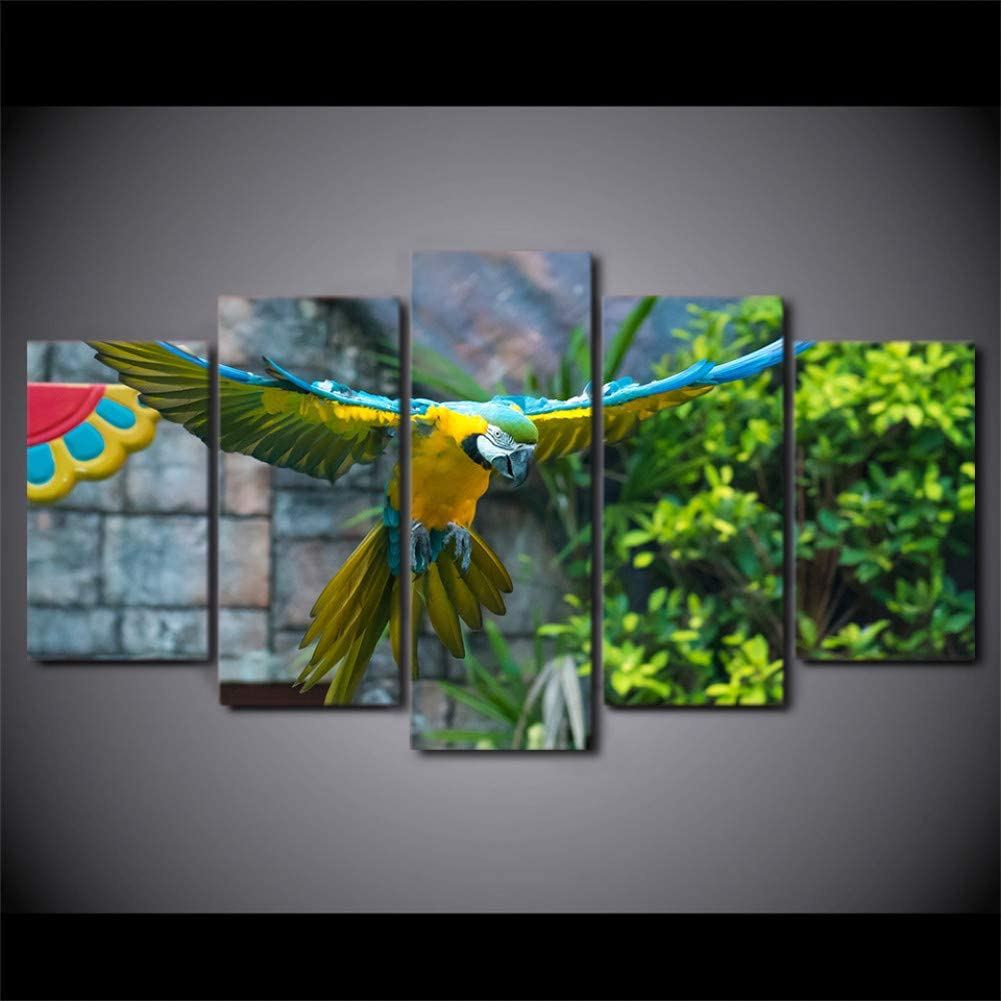 TYART Lienzo de Pintura 150×80cm HD Impreso 5 Piezas Lienzo Arte Loro Mascota Pintura Colorida Pluma pájaro Pared Cuadros para Sala decoración