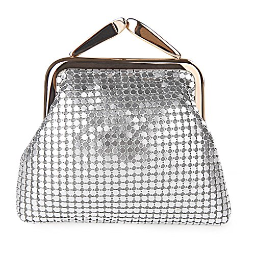 expouch Women's Small Buckle Coin Purse Classic Aluminum Metal Mesh Pouch for Women Girls (Silver)