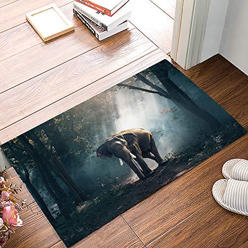 Asia Kitchen Machine - Indoor Doormat Non Slip for Front Door Inside Kitchen Bathroom Floor Mud Dirt Trapper Entrance Rug Shoes Scraper Machine Washable Asia Thailand Elephant in The Forest 15.7 x 23.6 inch