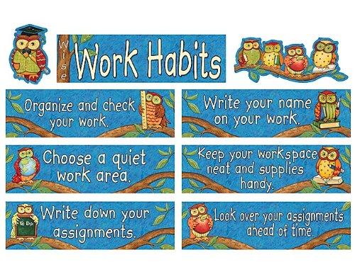 Teacher Created Resources SW Wise Work Habits Mini Bulletin Board (4298)
