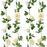 Felice Arts 2pcs 13 FT Fake Rose Vine Flowers Plants Artificial Flower Hanging Rose Ivy Home Hotel Office Wedding Party Garden Craft Art Decor,Champagne