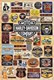 "O-33005 Harley Davidson Motorcycle Poster#14 Size 24""x35""inch. Rare New - Image Print Phot"