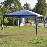 10'x10'Outdoor Canopy Party Wedding Tent Garden Gazebo Pavilion Cater Events (Blue)