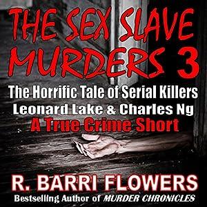 The Sex Slave Murders 3 Audiobook