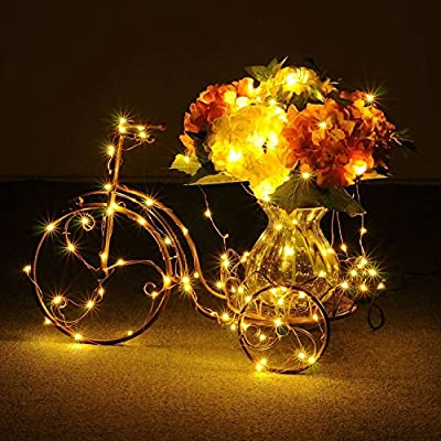 SEHOO String Lights, Copper Wire Starry Lights, Elegant Rope Light(150 Leds, 50ft), Suitable for Indoor/Outdoor, Garden, Patio, Yard, Home, Christmas Tree, Parties, Wedding