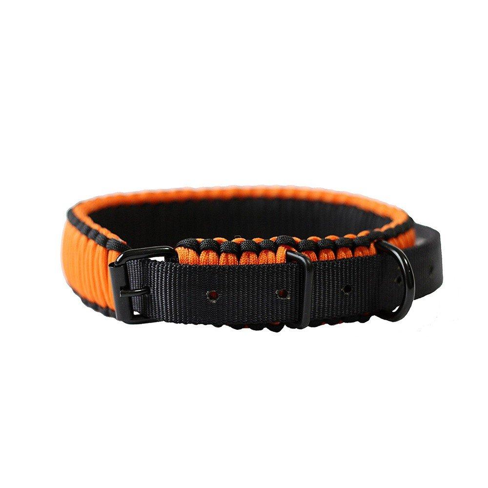 Pet Collars, Police Dog, Dog Collar, Rope, Dog Collar, orange.