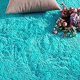 PAGISOFE Blue Fluffy Shag Area Rugs for Bedroom