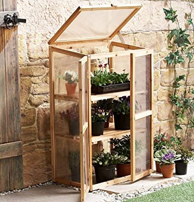 Leisure Season Mini Greenhouse, Solid Wood, Decay Resistant