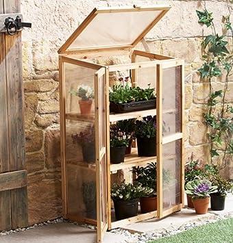 Wonderful Mini Greenhouse