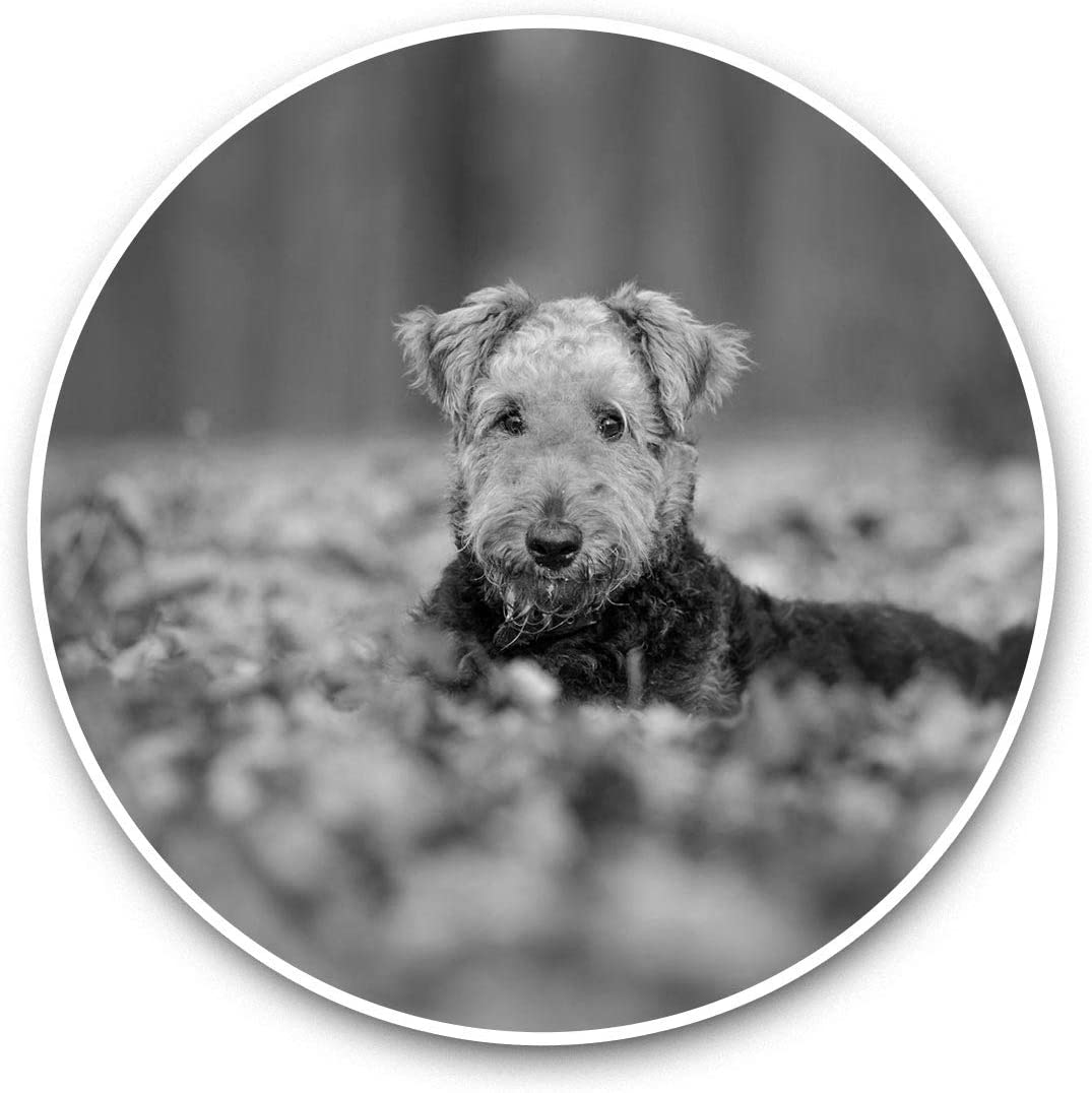 Vinyl Stickers (Set of 2) 15cm Black & White - Autumn Airedale Terrier Dog Puppy Laptop Luggage Tablet #36625