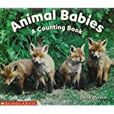 Animal Babies: A Counting Book (Science Emergent Readers)