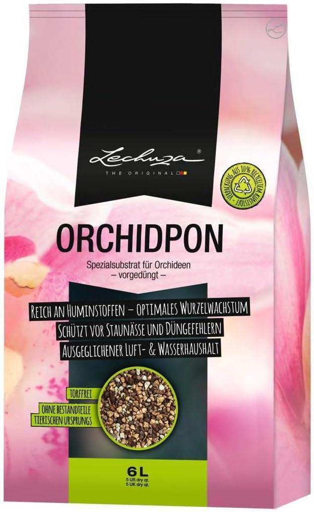 Lechuza Orchidpon