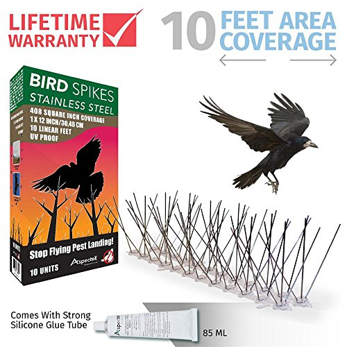 Pigeon Spikes - Aspectek Stainless Steel Bird Spikes 10 Feet (3 Metre), Bird Deterrent Kit With Transparent Silicone Glue