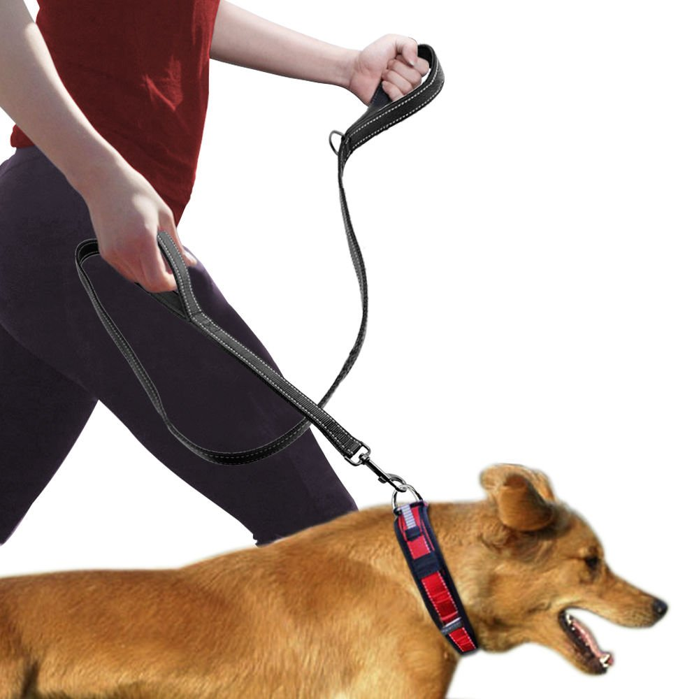 Dog Leash Double Handles, 2 Layer Training Leash with Traffic Padded Handles,6ft Long Durable Dual Leash for Dogs
