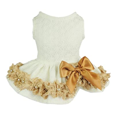 Fitwarm Elegant Lace Pet Clothes