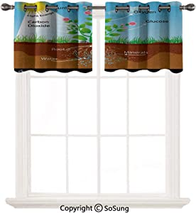 """Educational 2 pcs 52x18"""" Short Curtains Blackout Valance,Photosynthesis in Plant Diagram Biology Botany Agriculture Environment Foliage Thermal Insulated Light Reducing Drapes for Half Window,Multicol"""