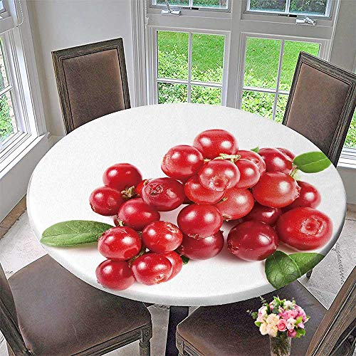 PINAFORE HOME Round Table Tablecloth Cranberries Isolated on White Background for Wedding Restaurant Party 43.5