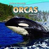 Orcas, Zelda King, 1448851459